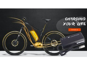 Kunshan ST Electronics CO., LTD - chargers for e-bikes