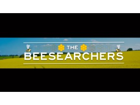 The Beesearchers